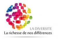 Logo Diversité 2015